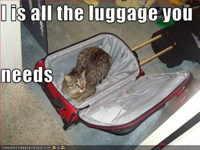 I is all the luggage you  needs