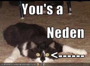 You's a Neden <------