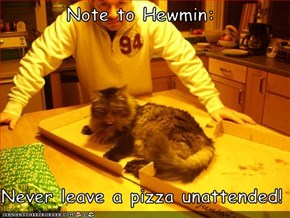 Note to Hewmin:  Never leave a pizza unattended!