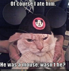 Of course I ate him.  He was a mouse, wasn't he?