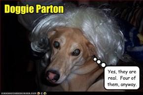 Doggie Parton