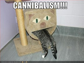 CANNIBALISM!!!