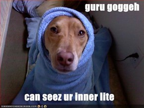 guru goggeh  can seez ur inner lite