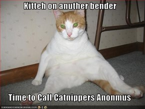 Kitteh on anuther bender  Time to Call Catnippers Anonmus