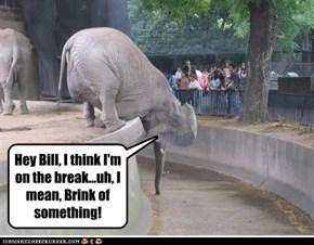 Hey Bill, I think I'm on the break...uh, I mean, Brink of something!
