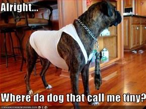 Alright...      Where da dog that call me tiny?