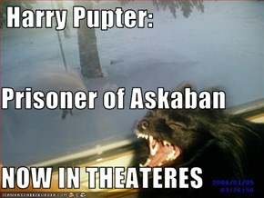 Harry Pupter: Prisoner of Askaban NOW IN THEATERES