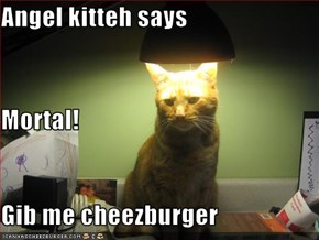 Angel kitteh says Mortal! Gib me cheezburger