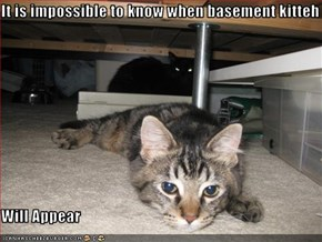 It is impossible to know when basement kitteh  Will Appear