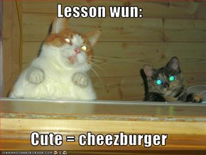 Lesson wun:   Cute = cheezburger
