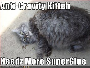 Anti-Gravity Kitteh  Needz More SuperGlue
