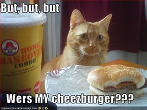 But, but, but  Wers MY cheezburger???