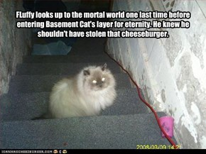 FLuffy looks up to the mortal world one last time before entering Basement Cat's layer for eternity. He knew he shouldn't have stolen that cheeseburger.