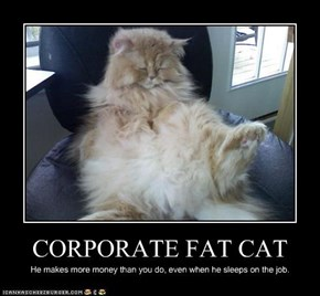 CORPORATE FAT CAT