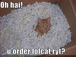 Oh hai!  u order lolcat ryt?