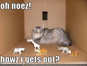 oh noez!  howz i gets out?