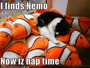 I finds Nemo  Now iz nap time