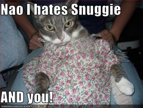 Nao I hates Snuggie  AND you!