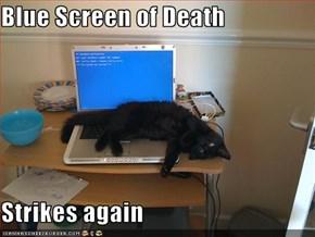 Blue Screen of Death  Strikes again