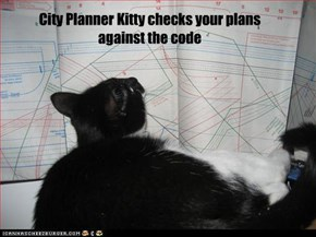 City Planner Kitty checks your plans against the code