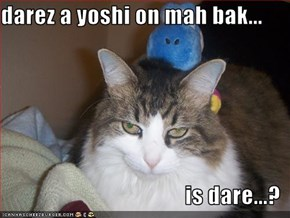 darez a yoshi on mah bak...  is dare...?