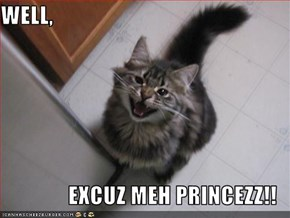 WELL,  EXCUZ MEH PRINCEZZ!!