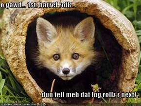 o gawd... 1st: barrel rollz...  dun tell meh dat log rollz r next!