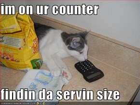 im on ur counter  findin da servin size