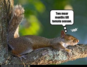 Two moar months till tomato season.