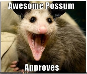 Awesome Possum  Approves