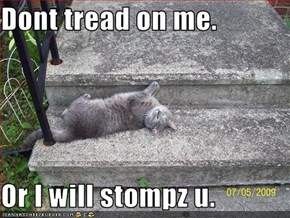 Dont tread on me.  Or I will stompz u.