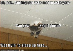 Oh, hai... Ceiling Cat asks mei to asks yew-                     Can yew             kep it down? Wez tryin' to sleep up here...