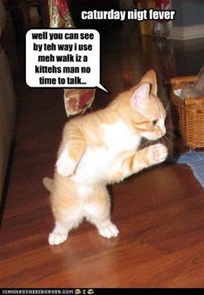 well you can see by teh way i use meh walk iz a kittehs man no time to talk...