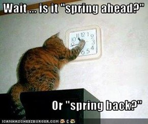 "Wait ... is it ""spring ahead?""  Or ""spring back?"""
