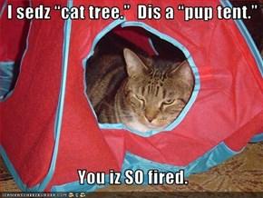 "I sedz ""cat tree.""  Dis a ""pup tent.""     You iz SO fired."
