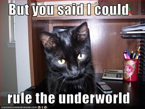 But you said I could  rule the underworld
