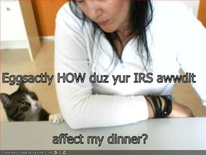 Eggsactly HOW duz yur IRS awwdit  affect my dinner?