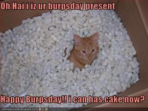 Oh Hai i iz ur burpsday present  Happy Burpsday!! i can has cake now?