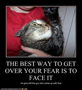 THE BEST WAY TO GET OVER YOUR FEAR IS TO FACE IT