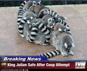 Breaking News - King Julian Safe After Coup Attempt