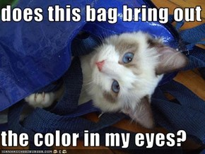 does this bag bring out the color  the color in my eyes?