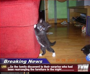 Breaking News - ...So the family discoverd to their surprise who had been rearranging the furniture in the night................