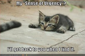 "My ""Sense of Urgency""?  I'll get back to you when I find it."
