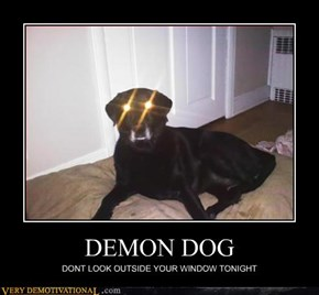 DEMON DOG