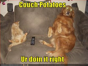 Couch Potatoes  Ur doin it right