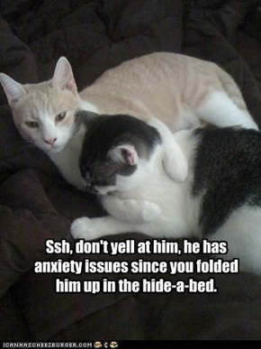 Ssh, don't yell at him, he has anxiety issues since you folded him up in the hide-a-bed.