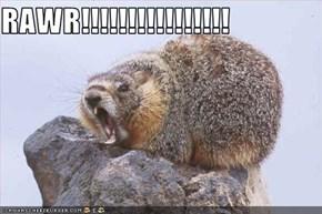 RAWR!!!!!!!!!!!!!!!!