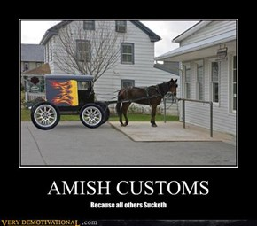 Pretty Fly for an Amish Guy