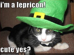 i'm a lepricon!  cute yes?