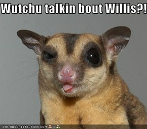 Wutchu talkin bout Willis?!